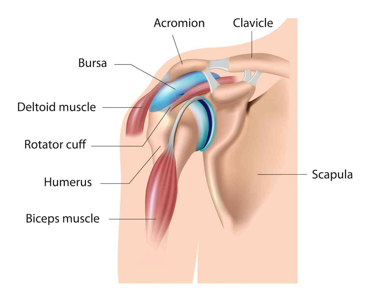 The 4 Main Causes Of Shoulder Pain